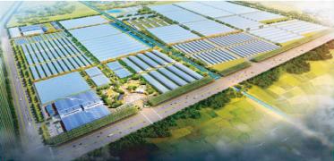 国家现代农业产业园